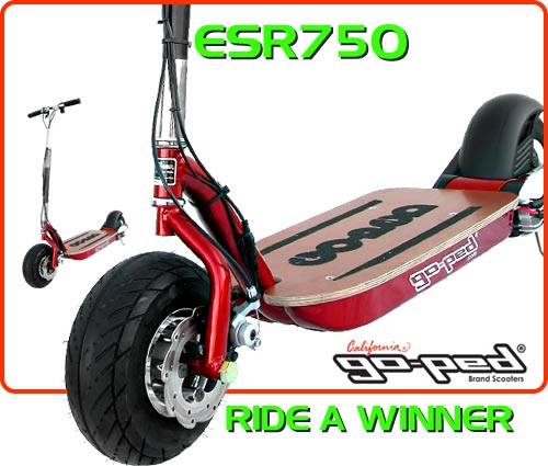 esr750 Electric Scooter